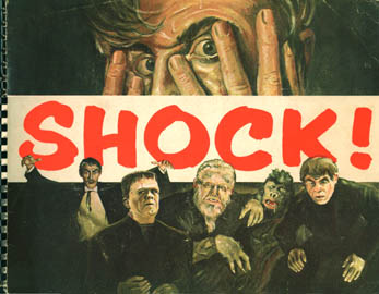 shock book cover